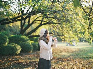 秋の写真・画像素材[1641042]