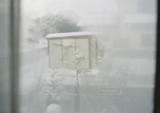 窓の前で花と花瓶の写真・画像素材[1738525]