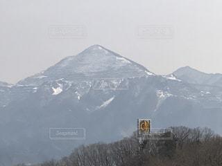 No.497199 山