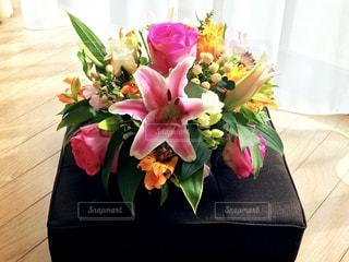 窓辺の花の写真・画像素材[1049799]