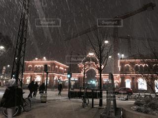 冬の写真・画像素材[523994]