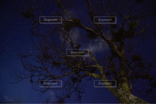 星空の写真・画像素材[498281]