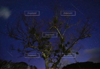 星空の写真・画像素材[498283]