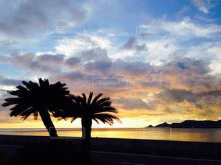 沖縄の写真・画像素材[500327]