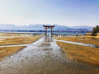 広島県、宮島の写真・画像素材[1220257]