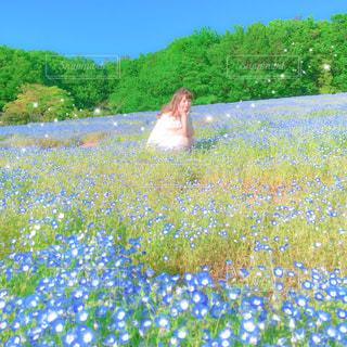 お花畑の写真・画像素材[547979]