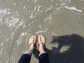海の写真・画像素材[499008]