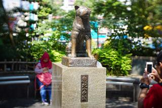 渋谷 - No.503772