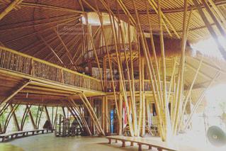 竹の写真・画像素材[500782]