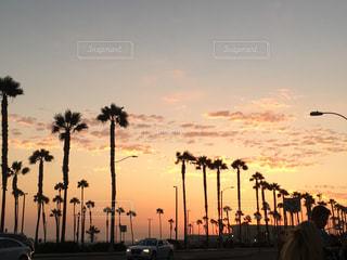 夕日の写真・画像素材[686667]