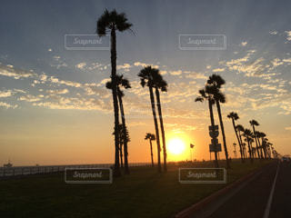 夕日の写真・画像素材[686668]