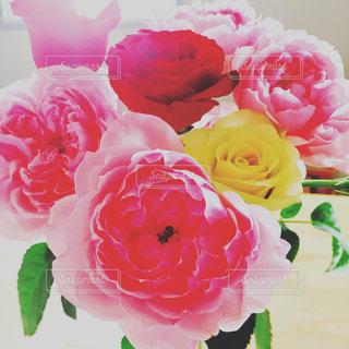 ピンクの花束💐の写真・画像素材[777816]