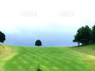 緑の写真・画像素材[654906]