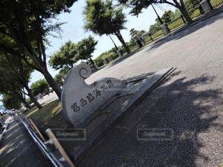 葛西臨海公園 葛西 公園 水族館 観覧車 海 - No.520206