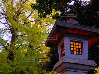 石行燈が灯る秋の夕暮れのの写真・画像素材[855193]