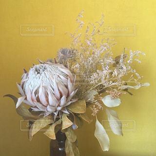 黄色の花と花瓶 - No.751114