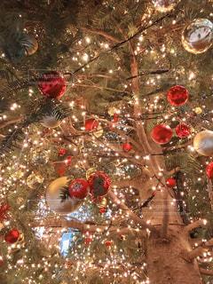 クリスマス ツリー - No.909717