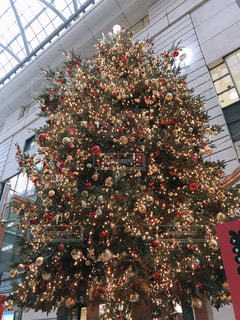 クリスマス ツリーの写真・画像素材[909719]
