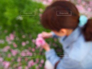 花を摘んでる母の写真・画像素材[872720]
