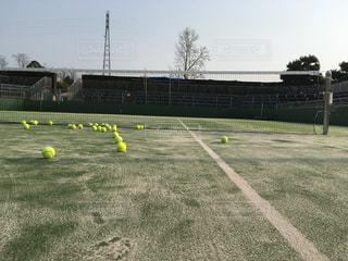テニスの写真・画像素材[1296338]