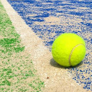 テニスの写真・画像素材[1296339]