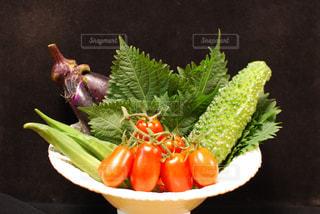 家で獲れた野菜たちの写真・画像素材[2236650]