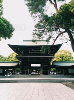 神社の写真・画像素材[566297]