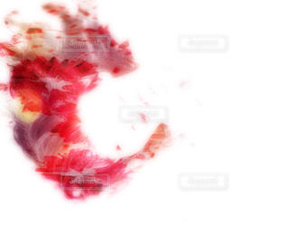 果物のぼやけた写真の写真・画像素材[1633114]