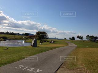 芝生の写真・画像素材[507764]
