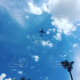 #空#飛行機#雲#空と雲#青空#快晴 - No.560907
