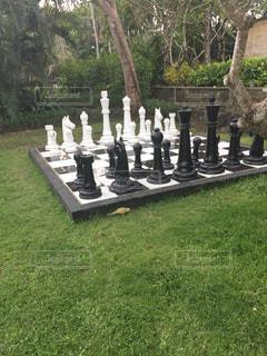 大きなチェスの写真・画像素材[744046]