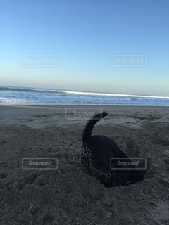 バリ島のビーチにての写真・画像素材[744049]