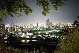 夜景の写真・画像素材[508287]