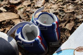 No.508681 靴