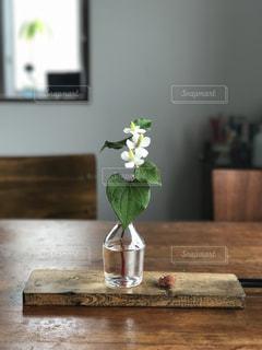 花の写真・画像素材[541038]