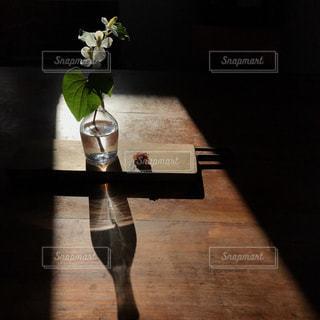 花の写真・画像素材[541041]