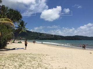 タイ、プーケット、パトンビーチの写真・画像素材[1317813]