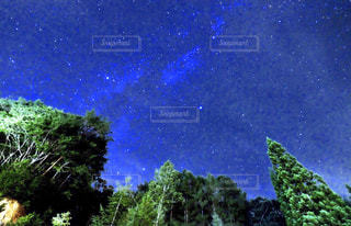 自然の写真・画像素材[2808626]
