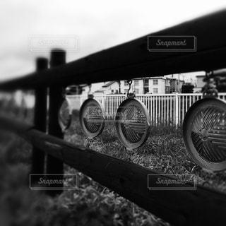 モノクロの写真・画像素材[681743]