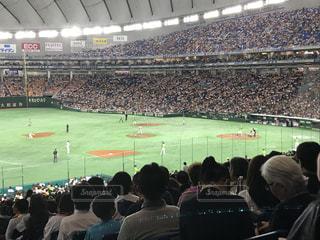No.510173 スポーツ