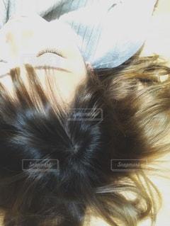ひとやすみの写真・画像素材[1006417]