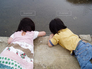 子供の写真・画像素材[511208]