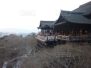 清水寺の写真・画像素材[545245]