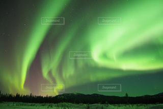 冬の写真・画像素材[564596]