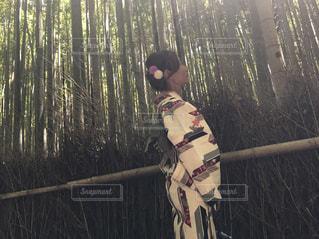 京都の写真・画像素材[540060]
