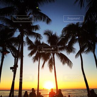 夕日の写真・画像素材[544196]