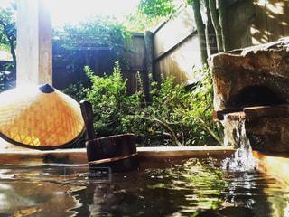 温泉の写真・画像素材[544201]