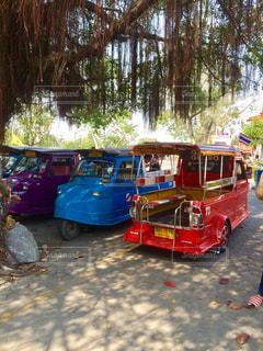 タイの写真・画像素材[516731]