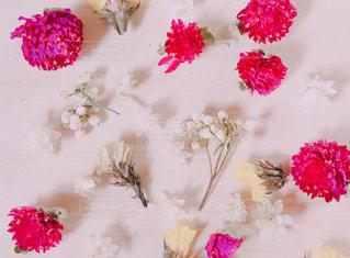 テーブルの上のピンクの花の写真・画像素材[1070085]