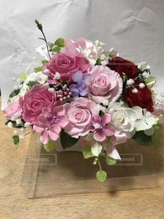 花の写真・画像素材[513133]